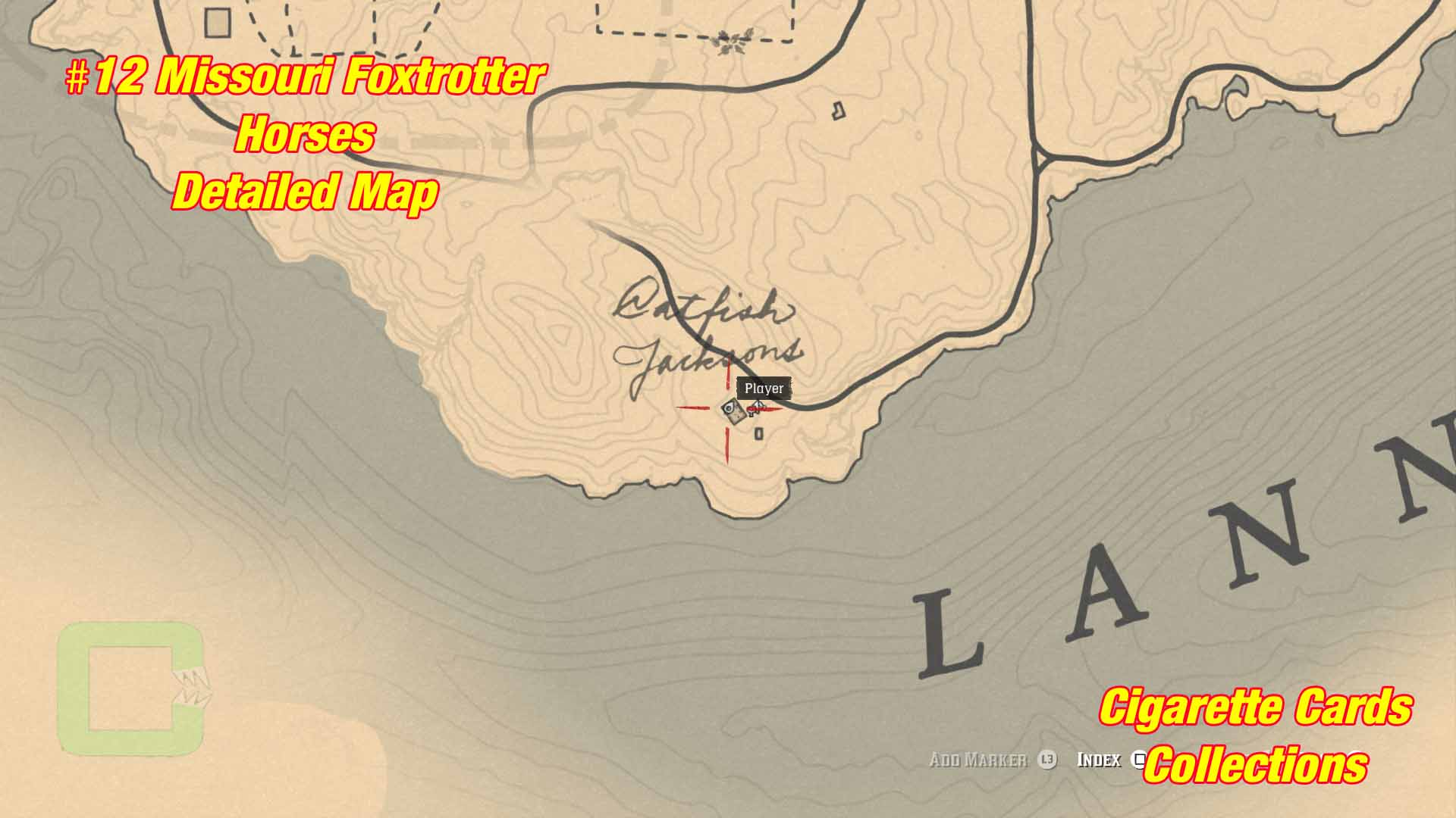 Horses 12 Collectible Cards Locations Red Dead